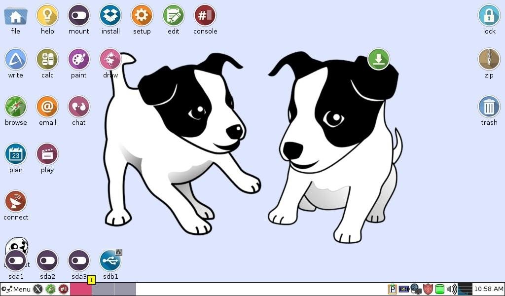 puppy-start